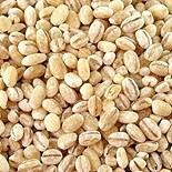 Husked barley